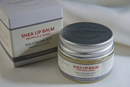 Shea Lip Balm Propolis & Honey