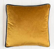 Load image into Gallery viewer, Velvet Cushions