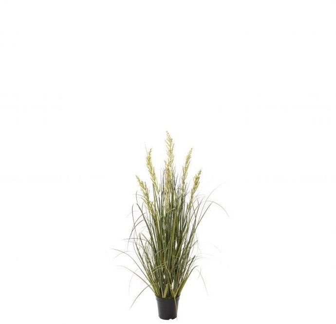 Wetland grass garden pot