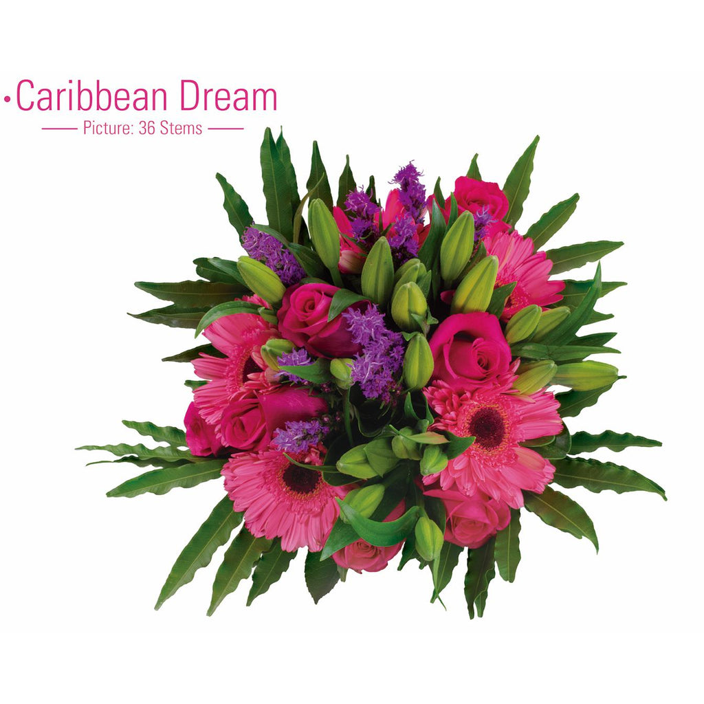 CARIBBEAN DREAM - Ambience Flowers
