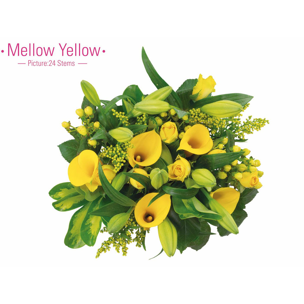 MELLOW YELLOW - Ambience Flowers