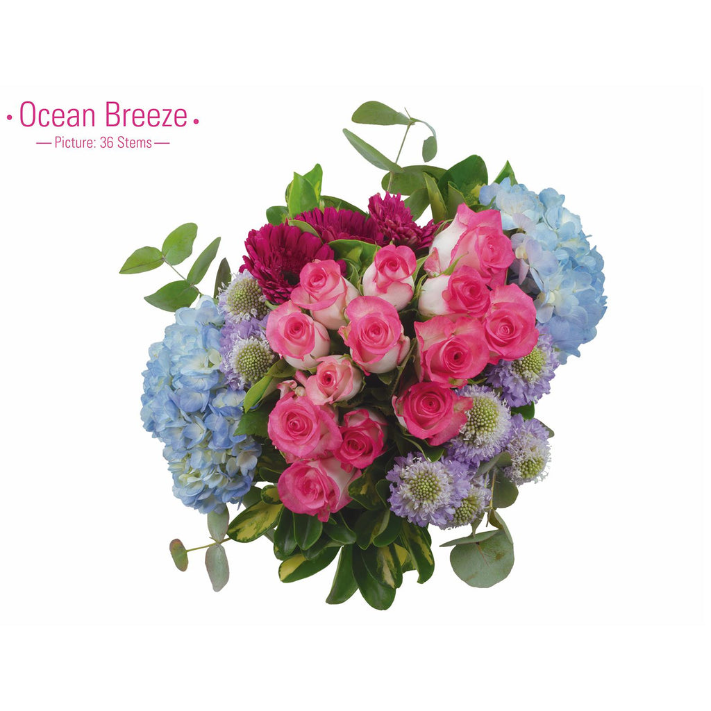 OCEAN BREEZE - Ambience Flowers