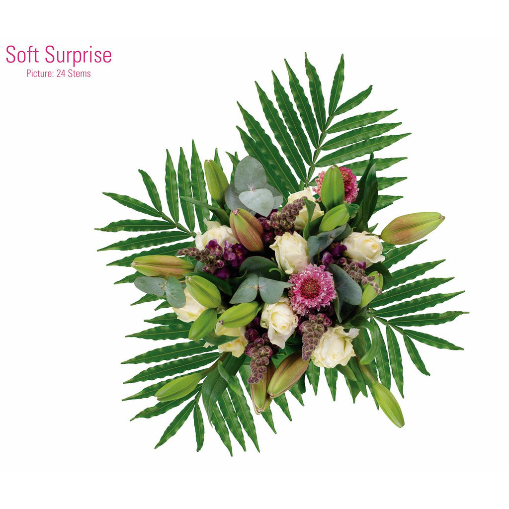 SOFT SURPRISE - Ambience Flowers