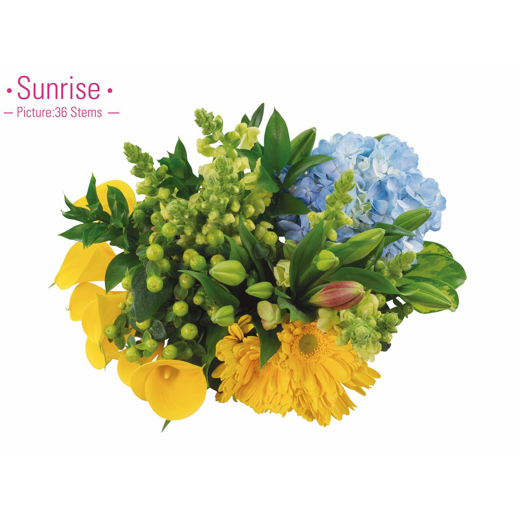 SUNRISE - Ambience Flowers