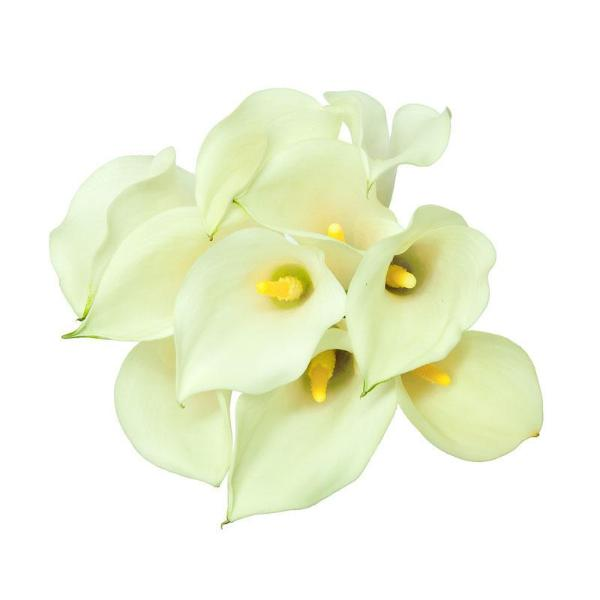Sapporo-White & Yellow Mini Callas - Ambience Flowers
