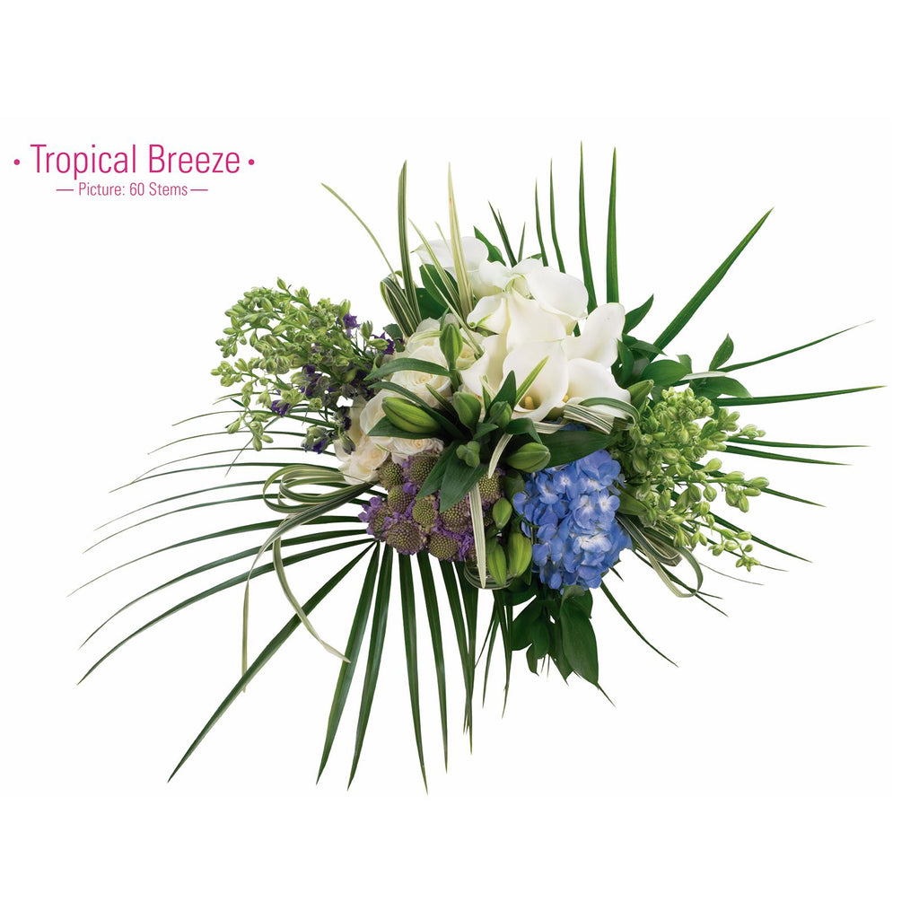TROPICAL BREEZE - Ambience Flowers