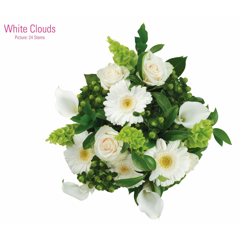 WHITE CLOUDS - Ambience Flowers
