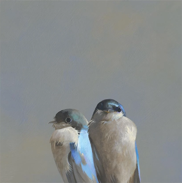 Swallow Pair Wings on Wood 10x10 Panel