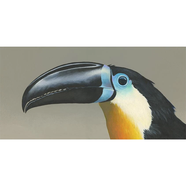 Toucan on Wood 12x6 Panel