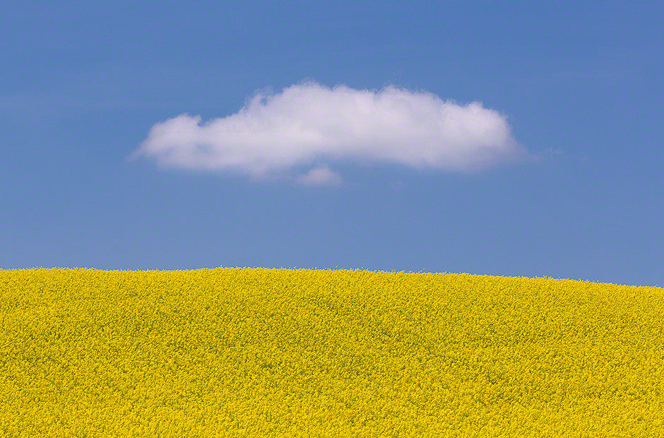 Czech Republic - cloud and grapeseed