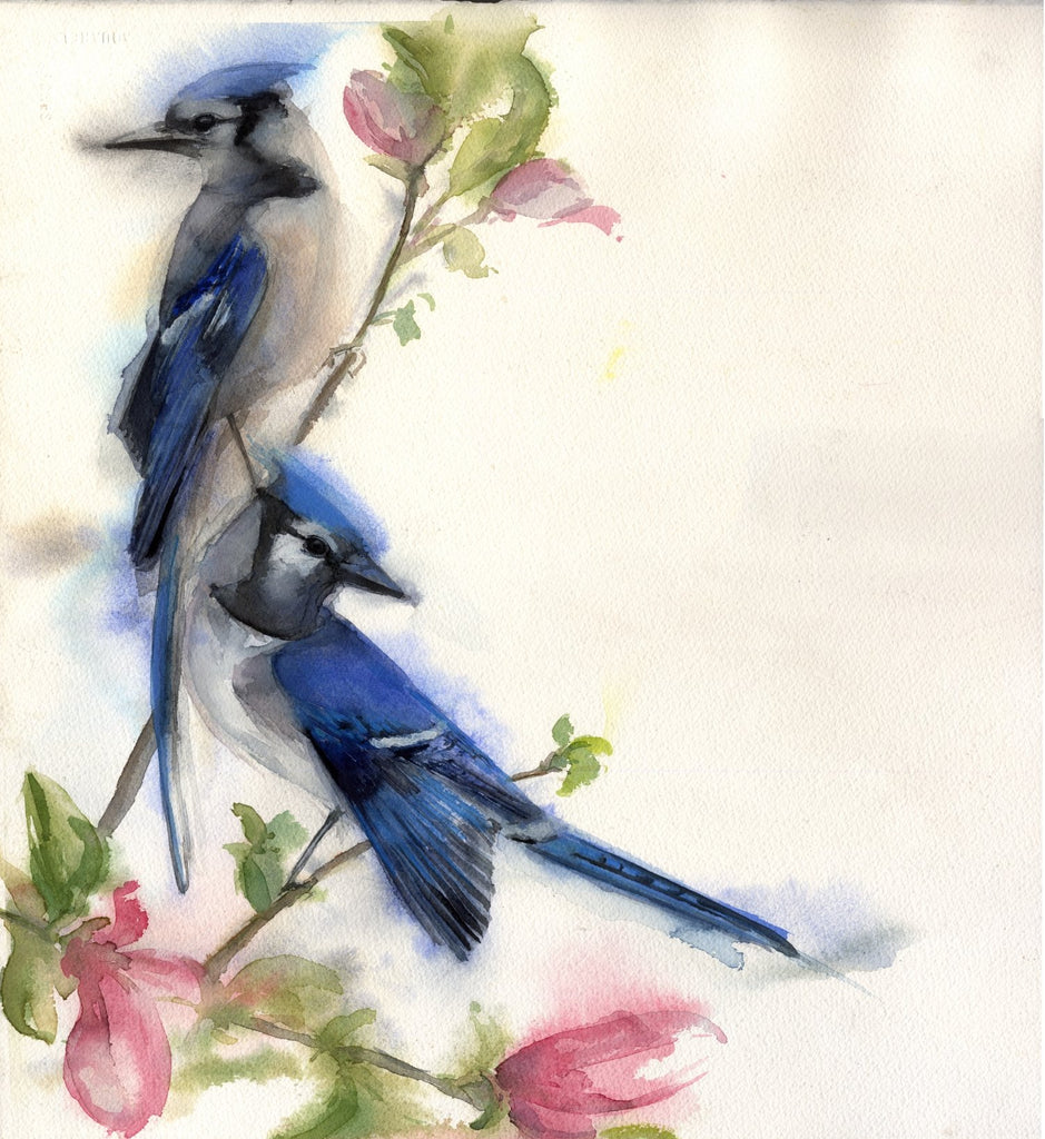 Blue Jays Pair