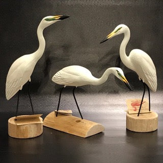 Snowy Egret (assorted)