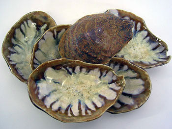 Abalone & Tortoise Oyster Soap Dish
