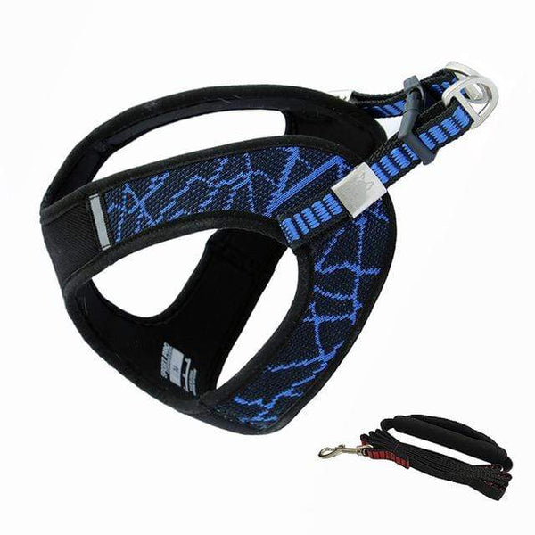 Katastimachling Harnais Blue / Suit / XS New pet chest strap V8 comfortable chest back