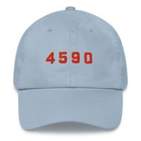 4590 Dad hat ©Rayspect