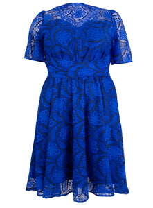 Plus Size Flare Sleeve Belted Lace Dress, Royal Blue