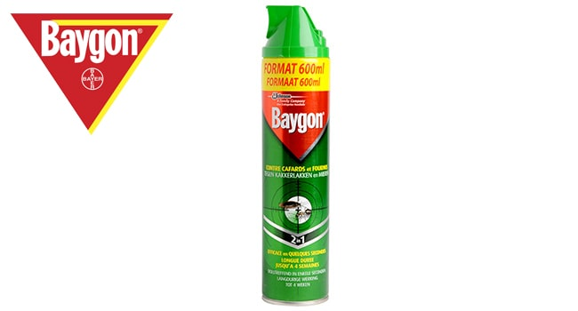 baygon insecticide puce et punaises