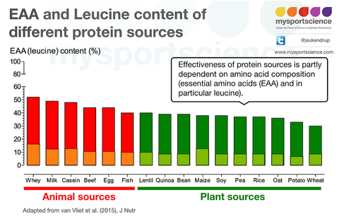 Chart of EAA and Leucine content in different protein sources