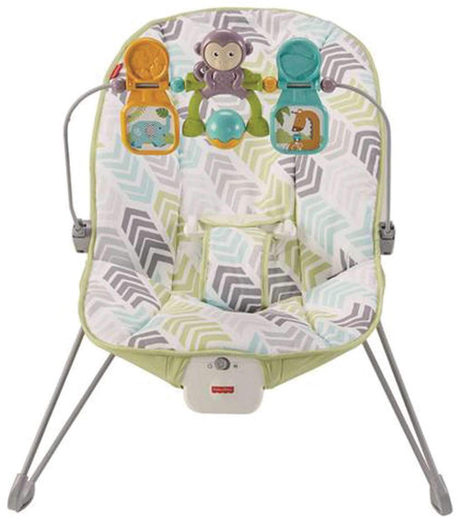 Fisher-Price Baby's Bouncer, Arrow Dynamic (DTG94) - Preggy Plus