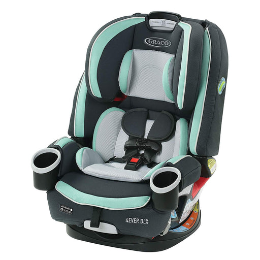 Graco All in One 4Ever DLX 4-in-1, Pembroke - Preggy Plus