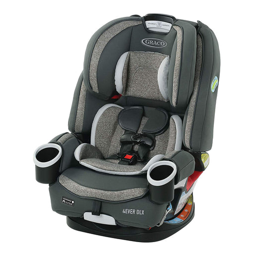 Graco All in One 4Ever DLX 4-in-1, Bryant - Preggy Plus