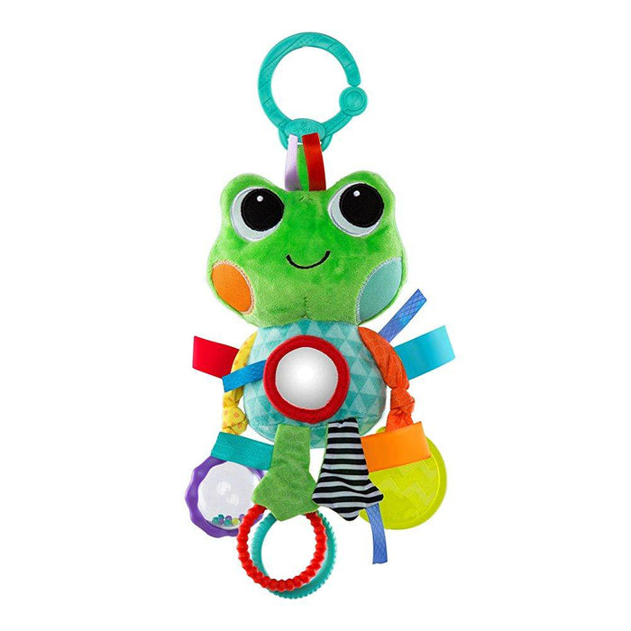Bright Starts Playful Pals Rattle and Teether Toy, Frog - Preggy Plus