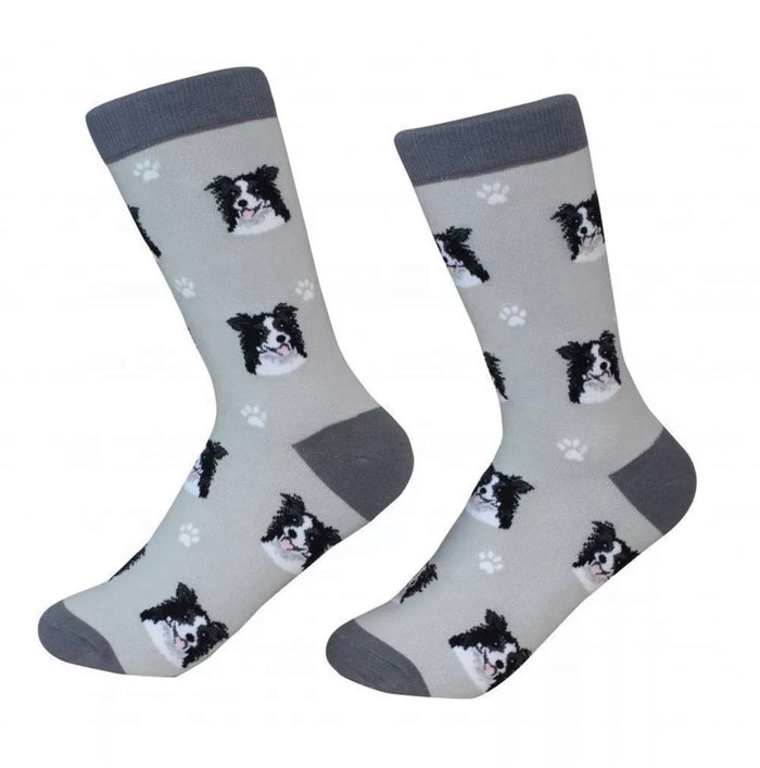 SOCK DADDY Brand Unisex BORDER COLLIE Dog E&S Pets