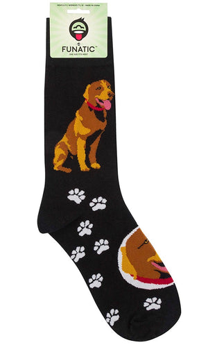 FUNATIC BRAND CHOCOLATE LAB DOG - Novelty Socks for Less