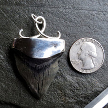 Load image into Gallery viewer, Megalodon Fossil Tooth Sterling Silver Handcrafted Pendant