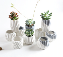 Load image into Gallery viewer, Geometric cactus & succulent pot
