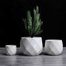 Load image into Gallery viewer, Geometric Ceramic Plant Pot