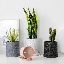Load image into Gallery viewer, Ceramic Plant Pot with Drainage Tray