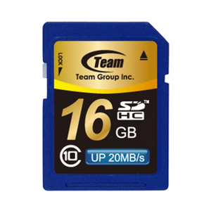 Team 16GB SDHC Class 10 Flash Card - TSDHC16GCL1001