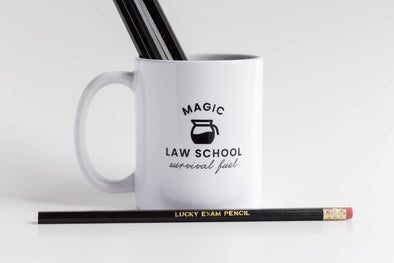 """Law School Survival"" Mug"