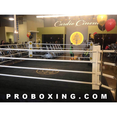 Daily Rental - Pro Boxing 18' x 18' Ring