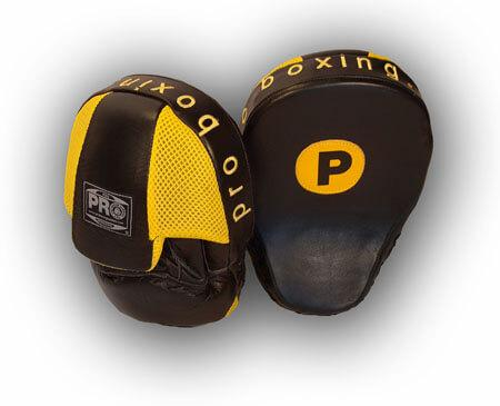 Pro Boxing Focus Mitts