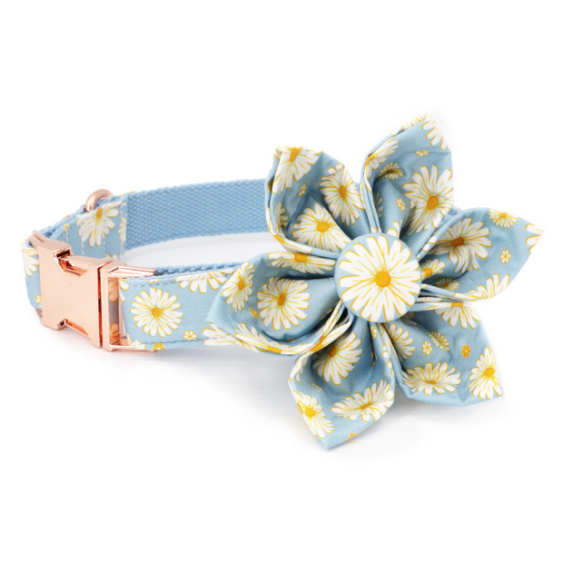 Day Dream Flower Collar