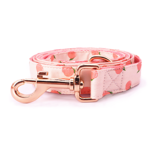Peach Bowtie Collar & Leash Set