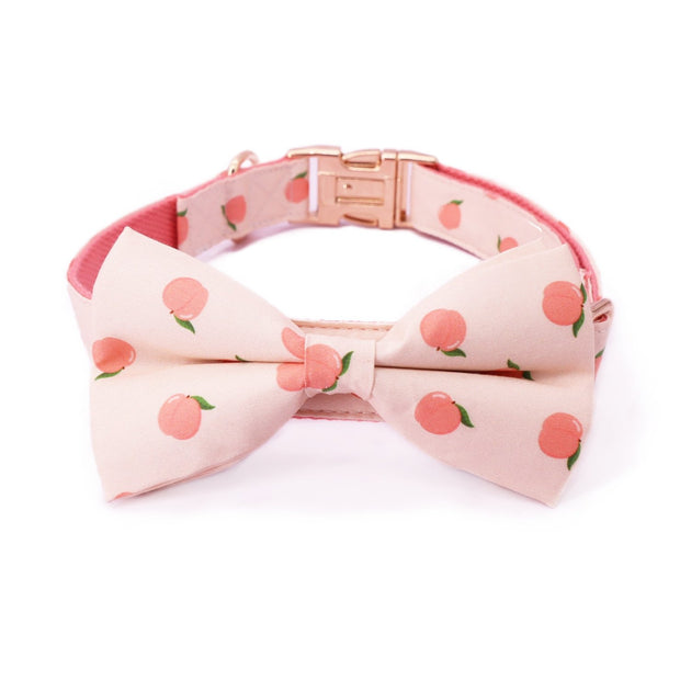 Peach Bow Tie Collar - Sniff & Bark