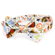 Tea Party Bow Tie Collar - Sniff & Bark