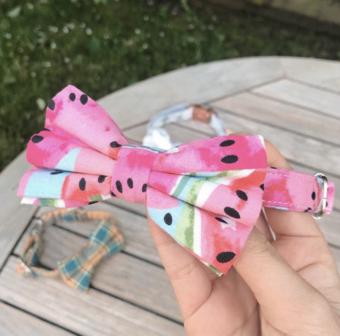 Watermelon Bow Tie Collar - Sniff & Bark