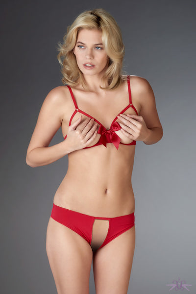 Maison Close Le Petit Secret Red Open Panty - Mayfair Stockings