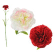 Decorative Flower Carnation 114400