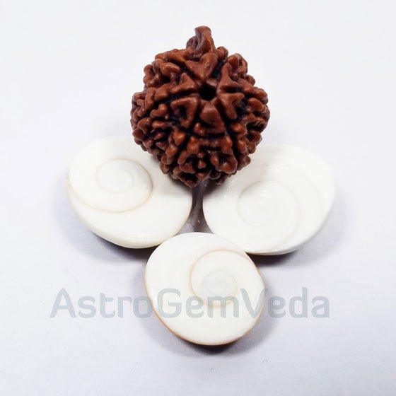 Ganesh Rudraksha Natural from nepal LUXURY