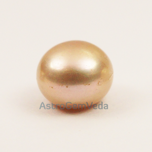 Natural Golden South Sea Pearl | Prime ( 2 - 8 Carat)
