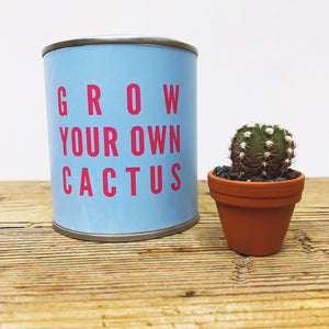 Grow Your Own Cactus
