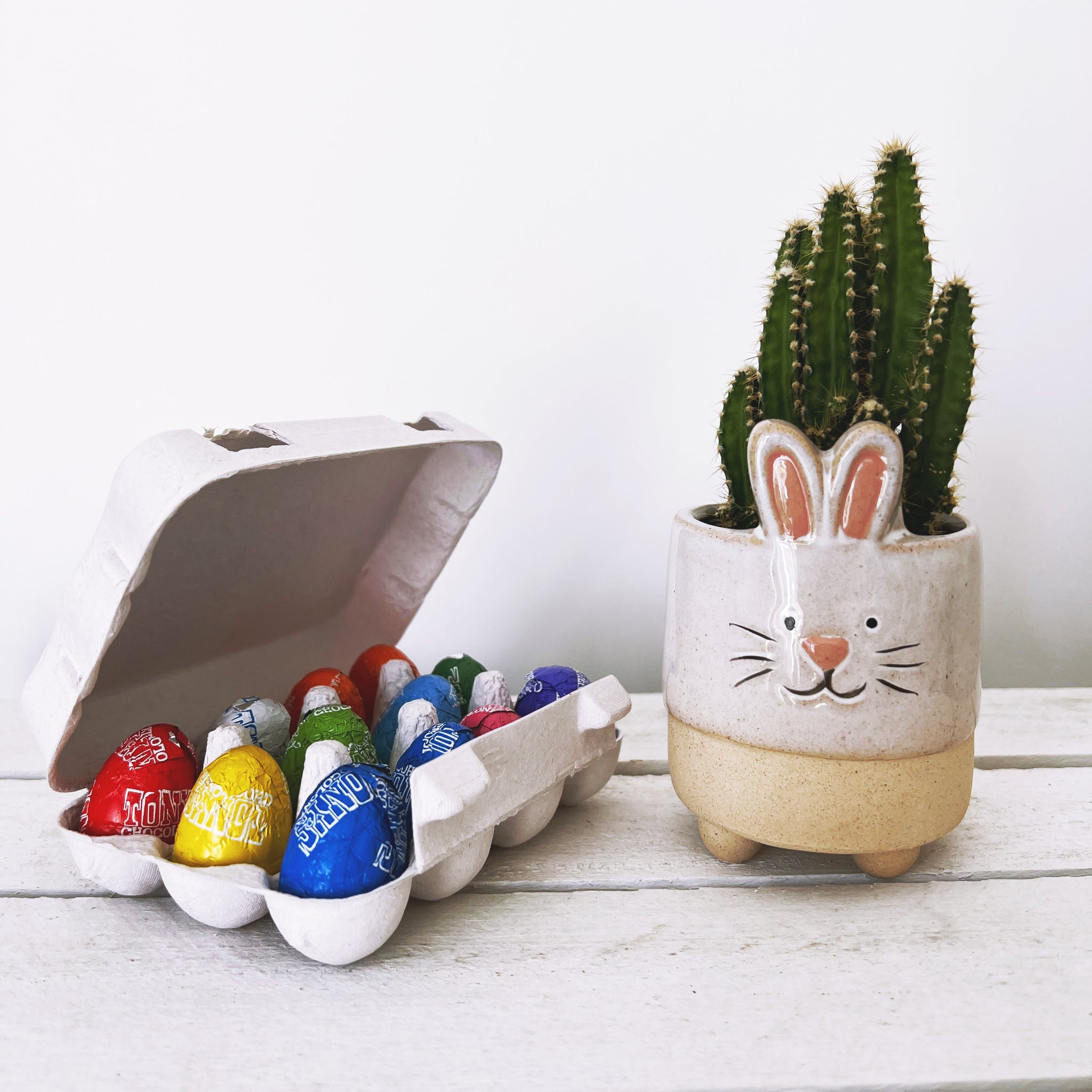 Grow Your Own Bee Friendly Flowers