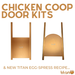 Titan Metal Doors & Egg-spress Recipe #2 🥚🍪