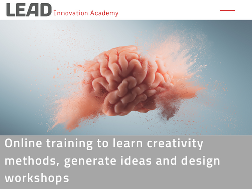 Online Training: creativity methods for idea generation, evaluation & moderation