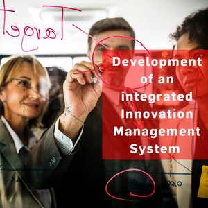 Development of an integrated innovation management system (EN)